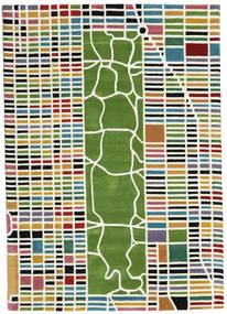 New-York/Manhattan Handtufted - Multi Matta 160X230 Modern Beige/Mörkgrön (Ull, Indien)
