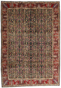 Kerman Matta 202X285 Äkta Orientalisk Handknuten Ljusbrun/Svart (Ull, Persien/Iran)